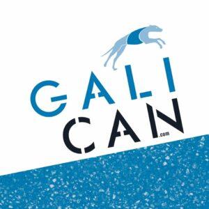 Galican